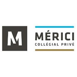 Logo Mérici